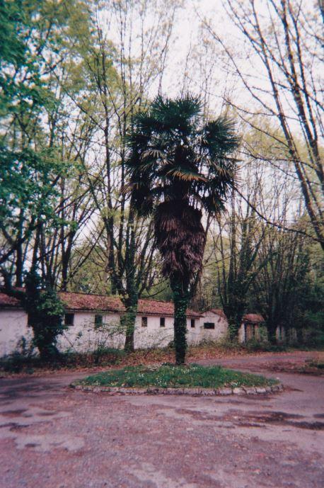 En 1990 la CCS du 1er RCP revient au camp d'Idron Aamci_30