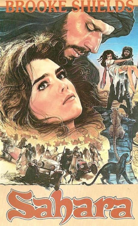Le Cinéma et le Sahara - Page 2 Broock11