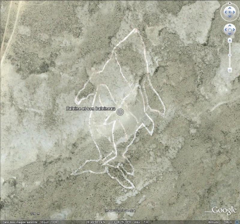 Les Géoglyphes découverts en Amérique du Sud avec Google Earth - Page 2 Bal10