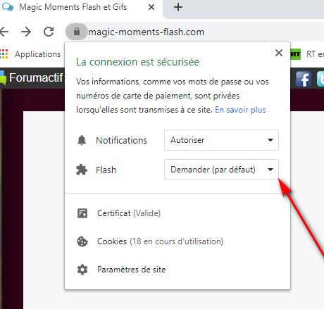Comment autoriser le flash sur google chrome + comment récupérer son mot de passe si perdu  Captur13