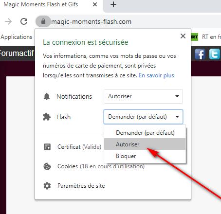 Comment autoriser le flash sur google chrome + comment récupérer son mot de passe si perdu  Captur14