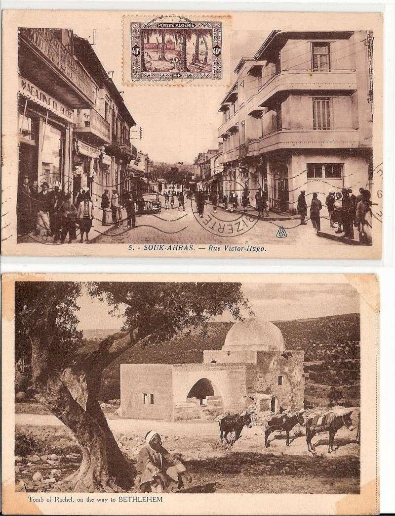 cartes postales d'algerie - Page 7 Scanne29