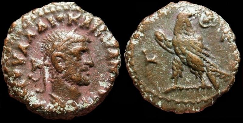 Collection mozarto 4e siècle Diocla12