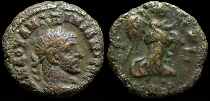 Collection mozarto 4e siècle Maximi12