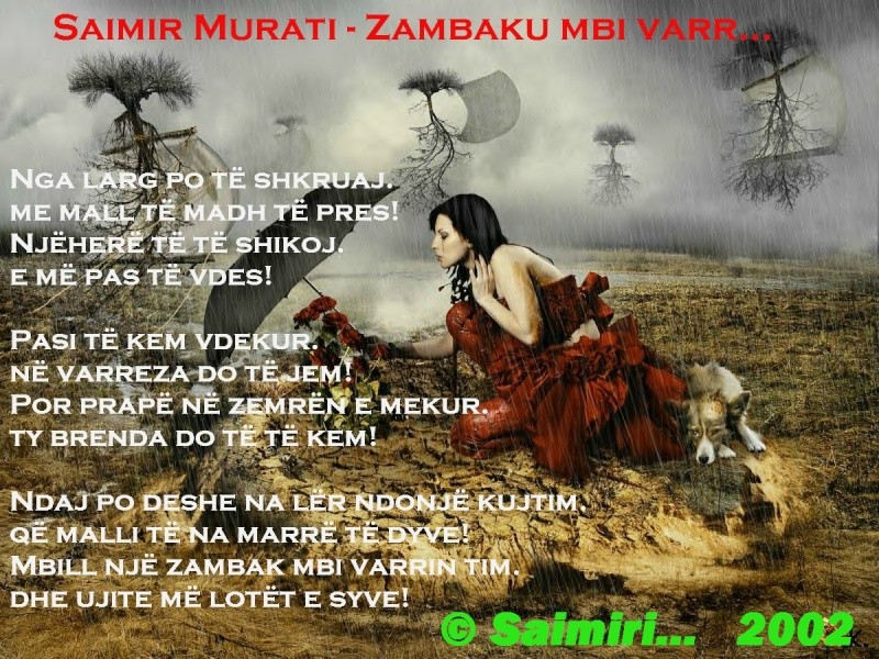 Foto-Poezi...  (© Saimiri.) Zambak10