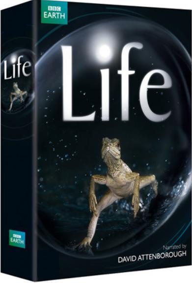 السلسلة الوثائقية الرائعة BBC - Life 2009 (منقول) Bbclif10