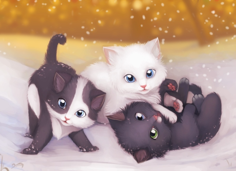 CUTE LOL KITTIES!!! Kitten10