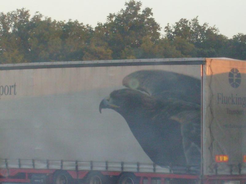 La publicité sur les camions S7301311