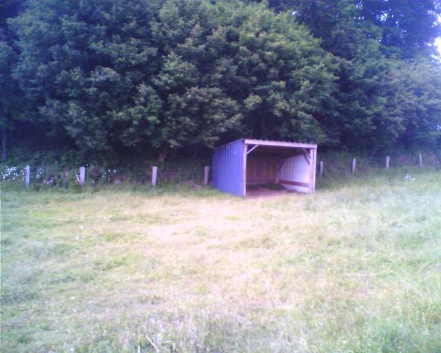 Construction d'un abri pour chevaux - Page 2 Abrity10