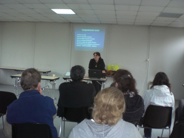 FORMATION CANINE DISPENSEE PAR CORINNE MARTIN - Page 2 Cimg3613