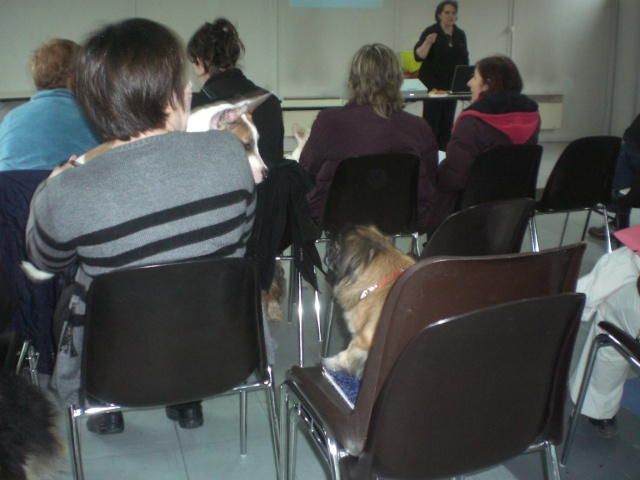 FORMATION CANINE DISPENSEE PAR CORINNE MARTIN - Page 2 Cimg3717