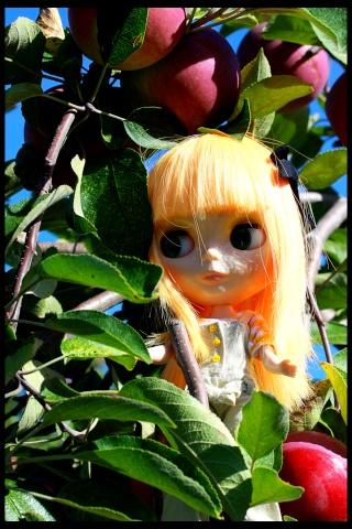 Sidonie (Simply Mango) - Joyeux Noël! p.5 Img_1510