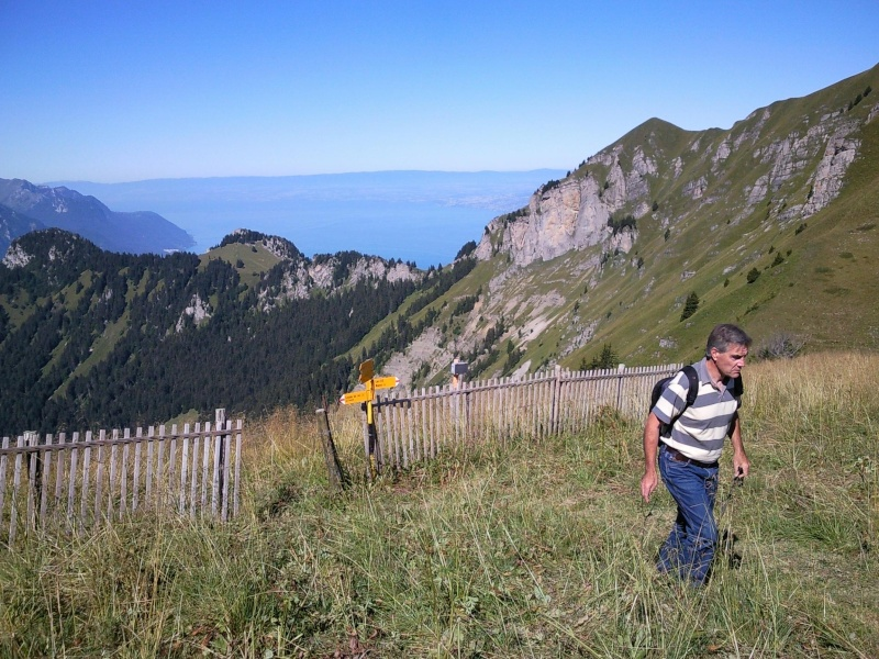 Bien le bonjour depuis la Suisse (par jean-luc V) - Page 5 Ley310