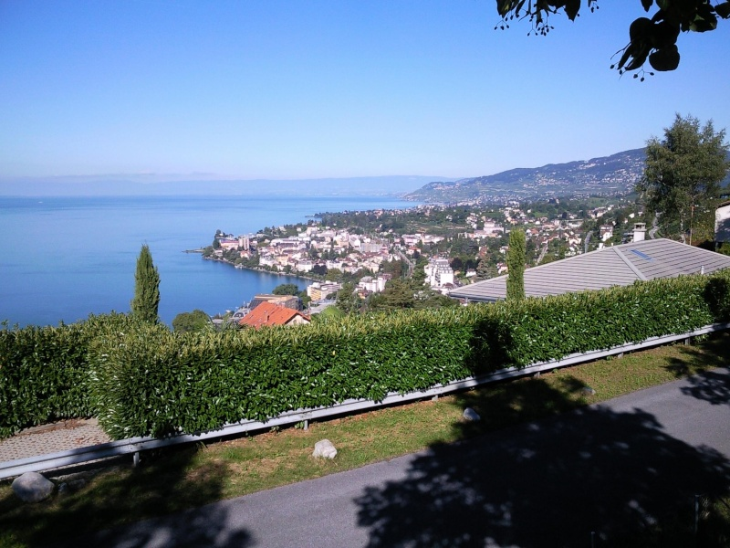 Bien le bonjour depuis la Suisse (par jean-luc V) - Page 5 Mon110