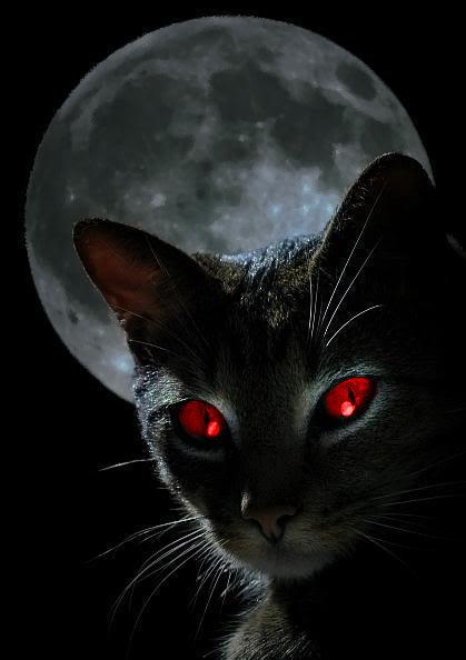 """Avatars """"Sous la Lune"""" Rouges10"""