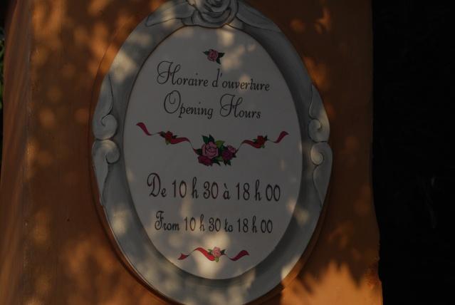 """Saison de Noël 2010 """"Le Noël Enchanté de Disneyland Paris"""" (du 07 novembre 2010 au 06 janvier 2011) - Page 6 Dsc_0028"""