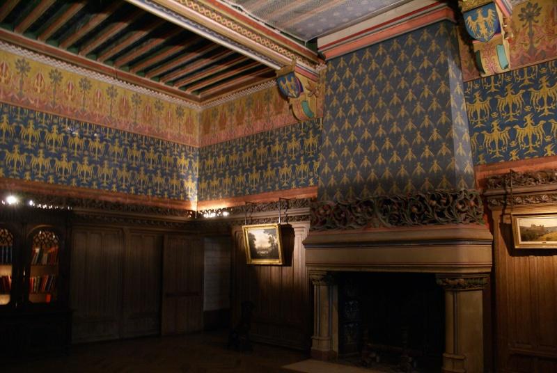 Visite de château,et mini rasso - Page 4 Dsc08010