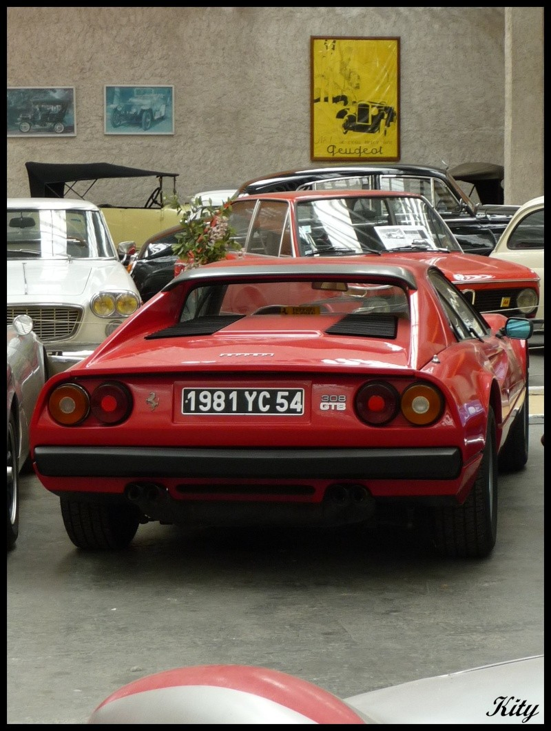 Visite de Nancy et du musée de la forêt de Haye - Page 4 P1030560