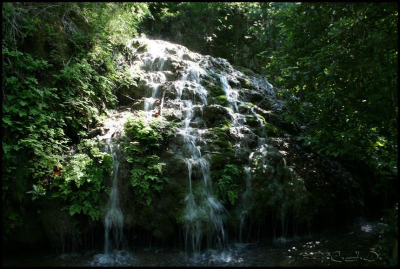Vallée de St Pons près de Gémenos (13) 20110613