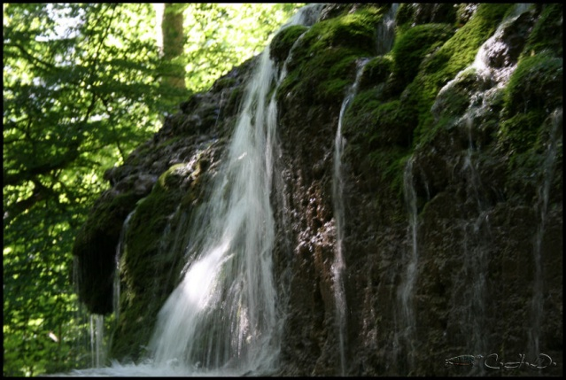 Vallée de St Pons près de Gémenos (13) 20110614