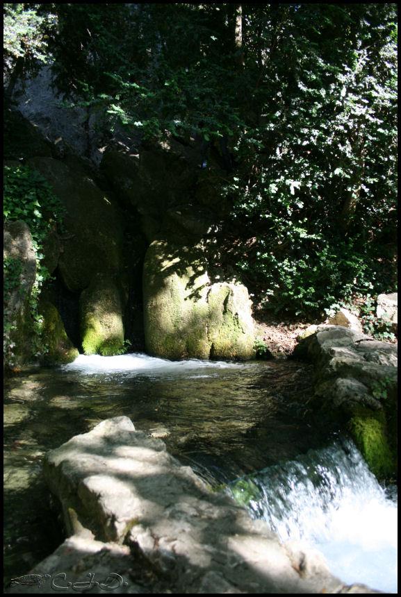 Vallée de St Pons près de Gémenos (13) 20110616
