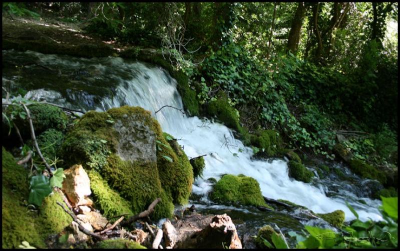 Vallée de St Pons près de Gémenos (13) 20110619