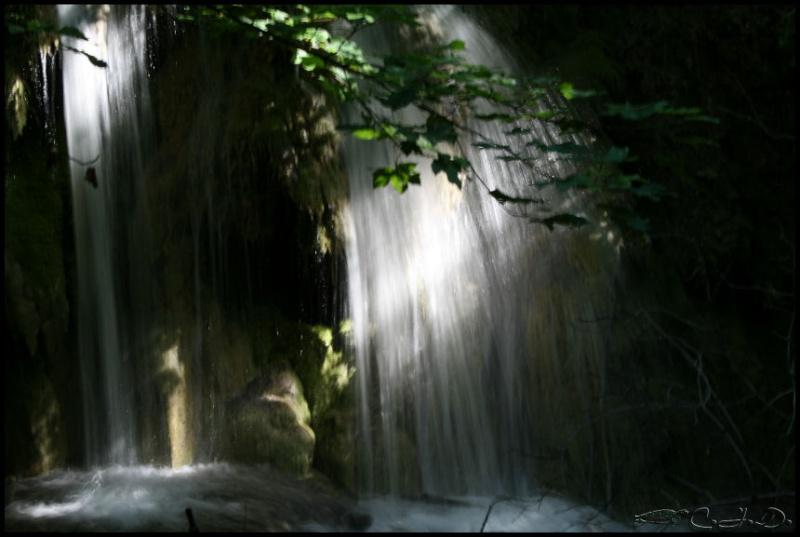 Vallée de St Pons près de Gémenos (13) 20110623