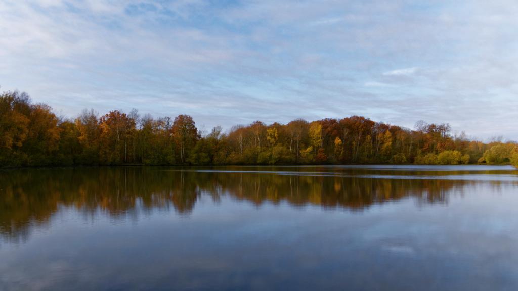 Légende d'automne _1020510