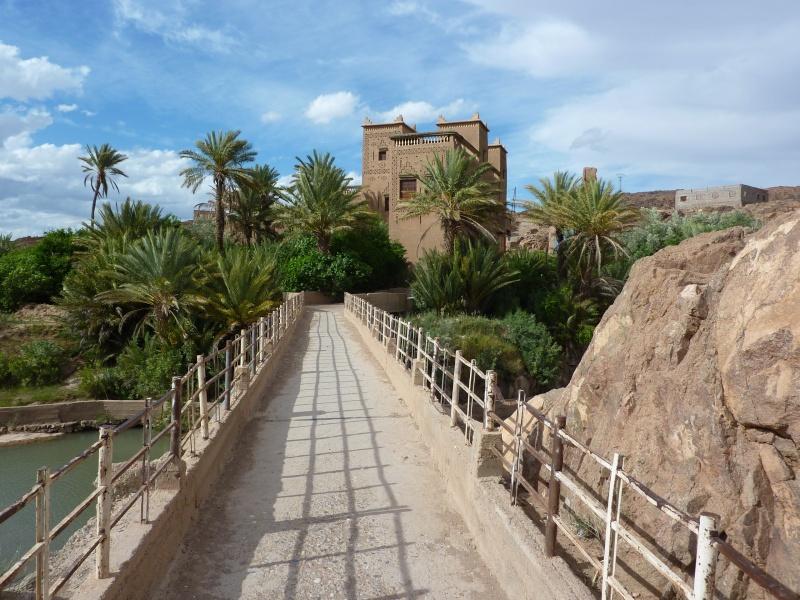 retour Maroc 2011 P1020413