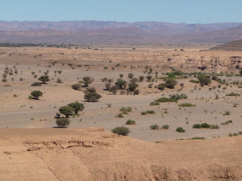 retour Maroc 2011 P1030112