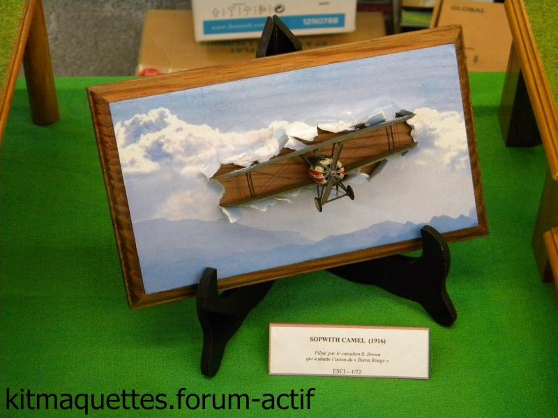 photos de l'expo de Cholet Cholet52