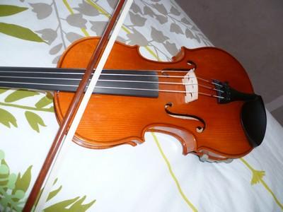 Le violon P1010610