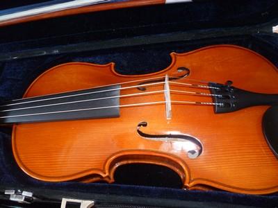 Le violon P1010612