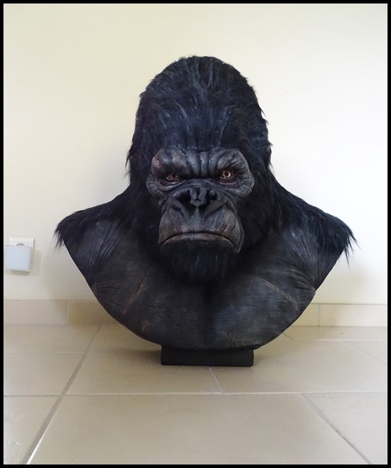 Kong lifesize bust Kong_122