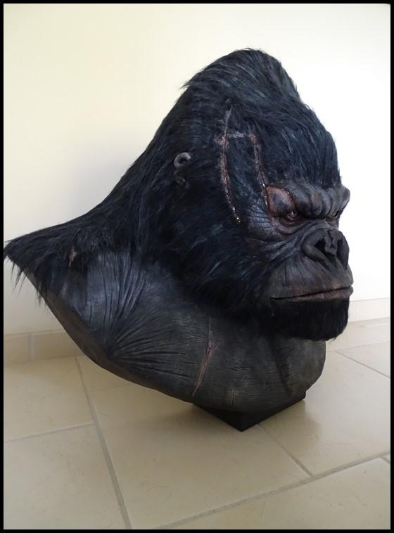 Kong lifesize bust Kong_124