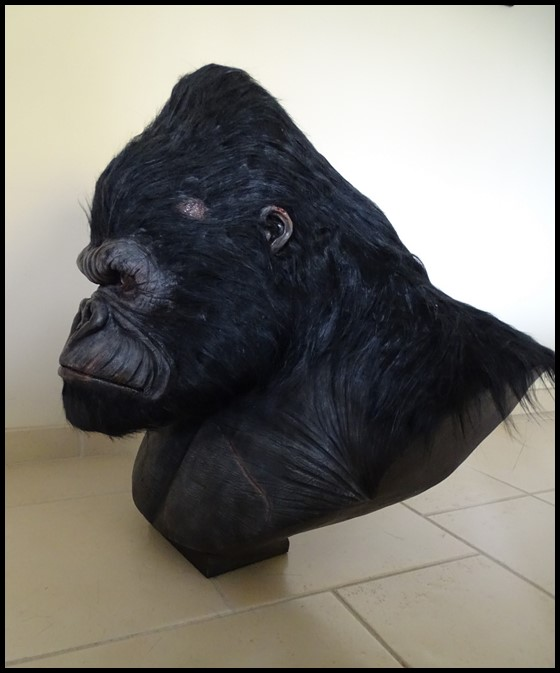 Kong lifesize bust Kong_127