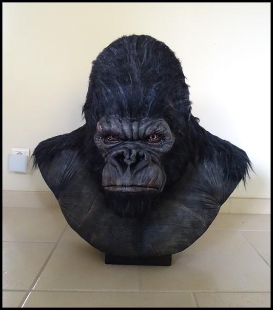 Kong lifesize bust Kong_128