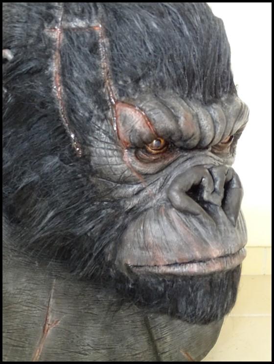Kong lifesize bust Kong_132