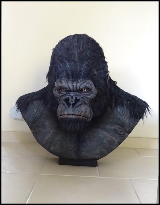 Kong lifesize bust Kong_133