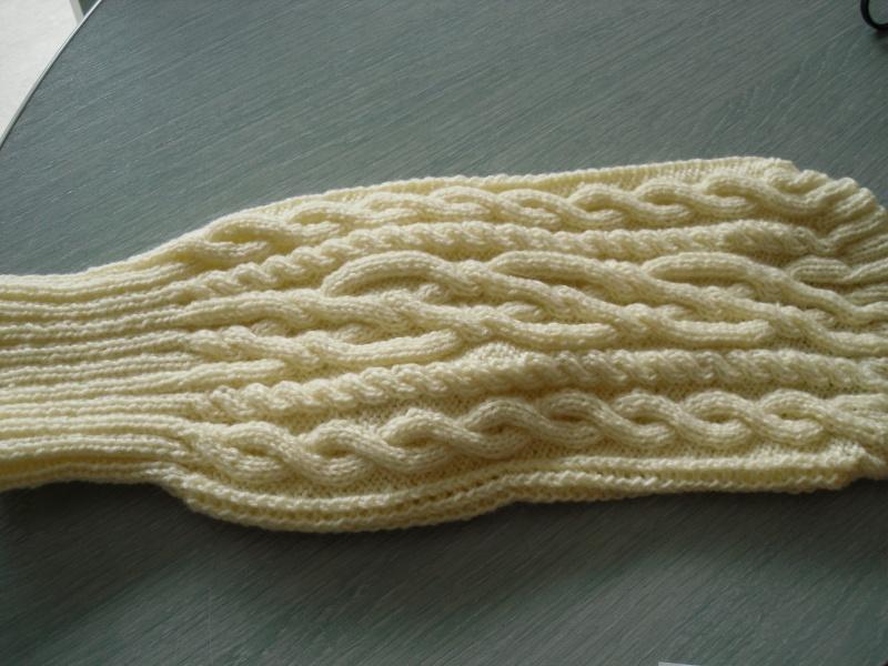 Manteau laine (tricoté main) . Sam_0011