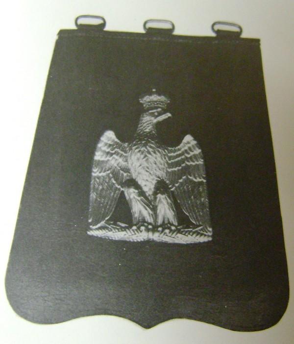 aigle de giberne Dsc03152