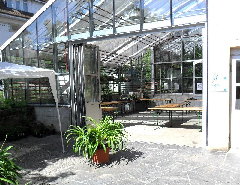 29/05/11 - Bourse aux Plantes Carnivores (et Tropicales) - Jardin botanique de Fribourg - Page 3 Sam_0210