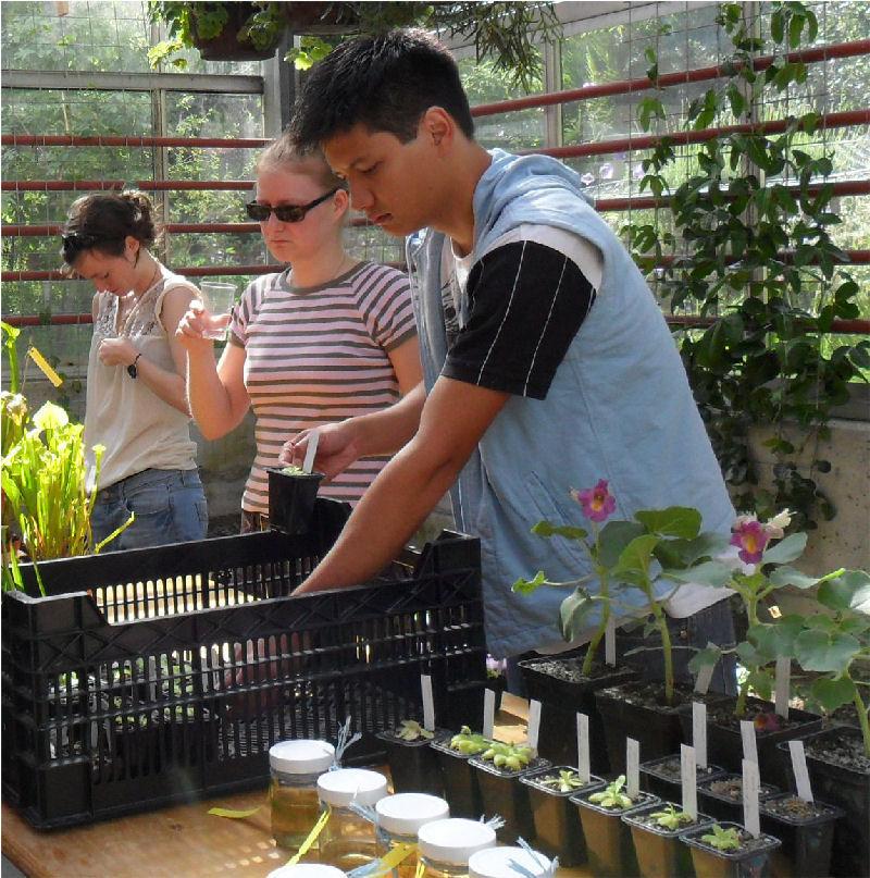 29/05/11 - Bourse aux Plantes Carnivores (et Tropicales) - Jardin botanique de Fribourg - Page 3 Sam_0217
