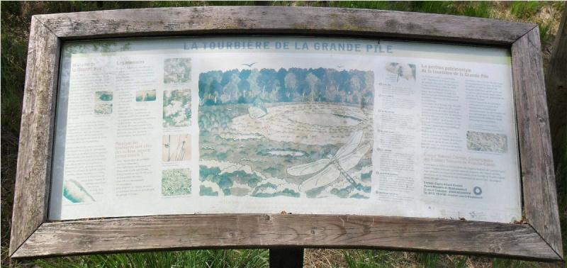 2 tourbières Les Viaux et La Grande Pile (France) St_ger19