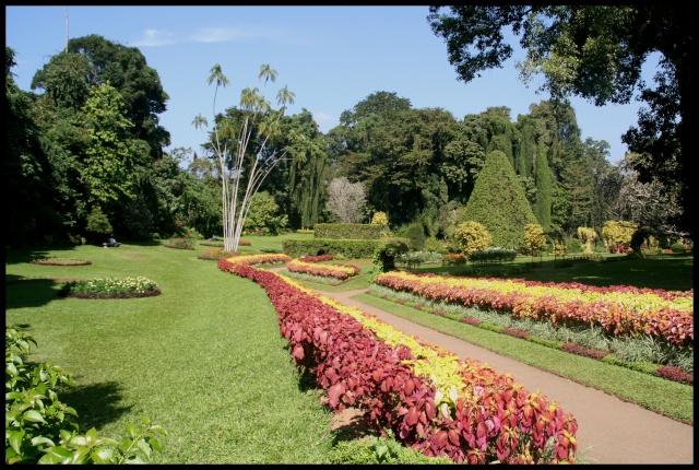 Photos de jardins, parcs, forêts... dans le monde Img_1910