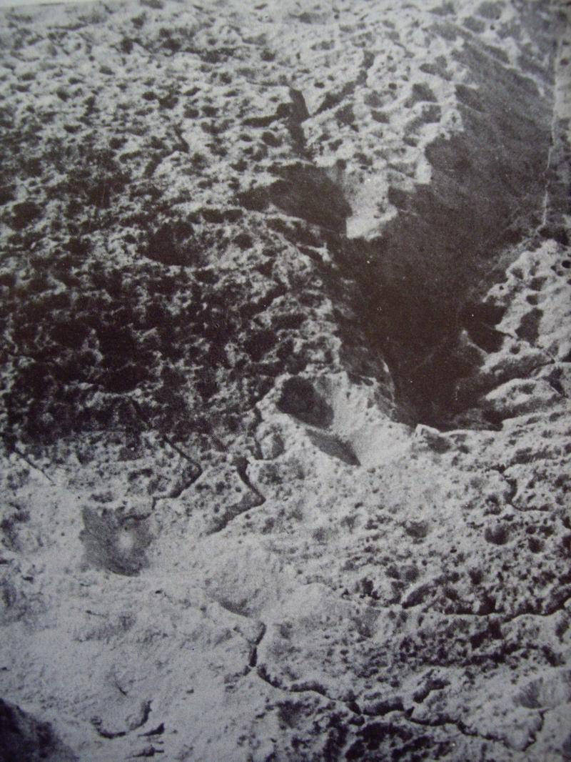 Mémorial des Braspartiates dans la Grande Guerre : 1916 044_ve10