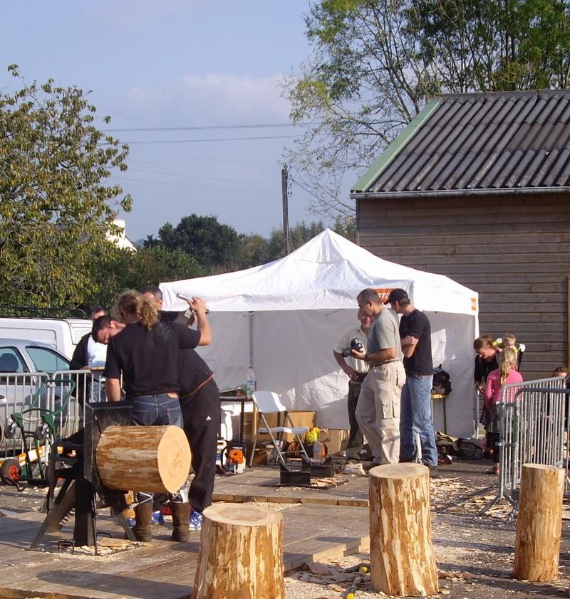 Fête de la Pomme, du Miel et des Champignons 2010 Imgp3142