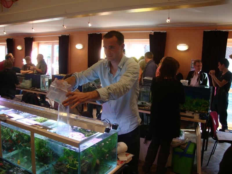 Bourse aux poissons le 10/10/2010 à Montdidier - Page 2 Dsc01531