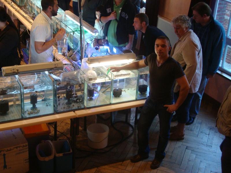 Bourse aux poissons le 10/10/2010 à Montdidier - Page 2 Dsc01615
