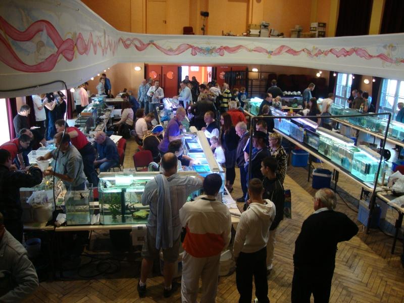 Bourse aux Poissons a mondidier Dsc01629